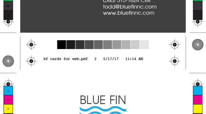 Blue Fin Construction Services Business Cards & Logo